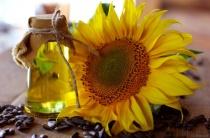 Подсолнечное масло от морщин на лице: 10 проверенных и эффективных рецептов использования