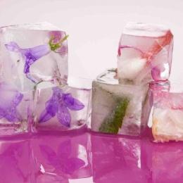 Лед от морщин на лице: рецепты приготовления, способы и правила применения
