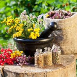 Народные средства от морщин на лице после 35 лет: лучшие рецепты, советы, рекомендации
