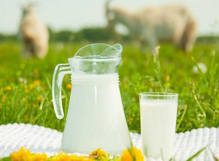 Рецепты крема для лица из козьего молока