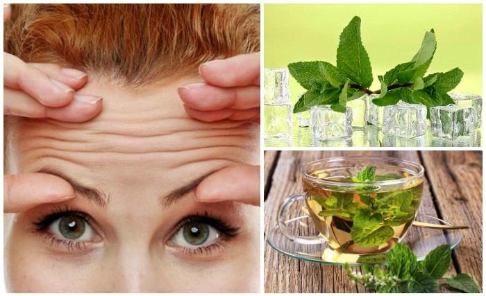 Народные средства от морщин на лице: лучшие рецепты масок, кремов и тоников, эффективные руководства омоложения кожи, польза трав, пошаговая инструкция приготовления